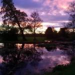 Pond Oct