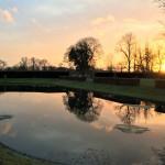 Sunset Lily pond