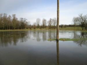 Überschwemmung jan14